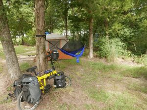 A bike out to the festival and camped.